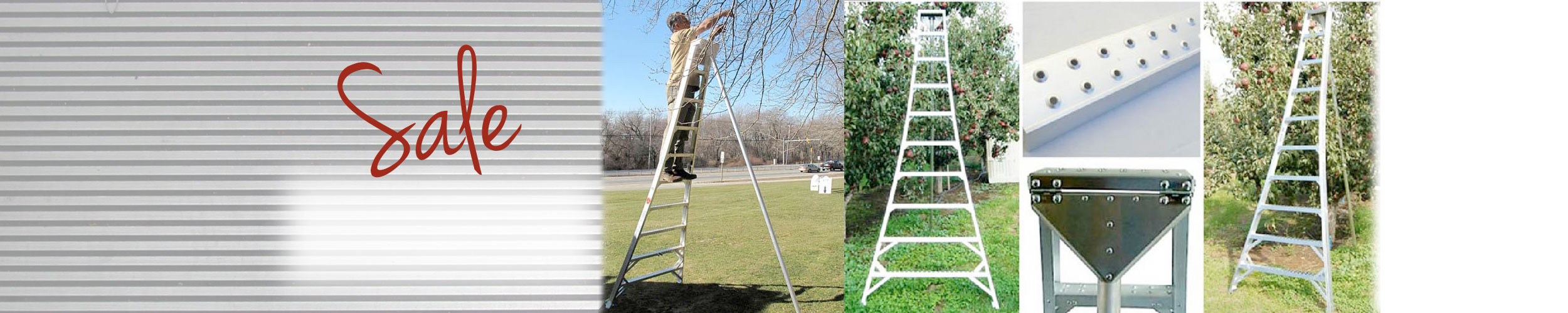 Aluminum Orchard Ladders Sale